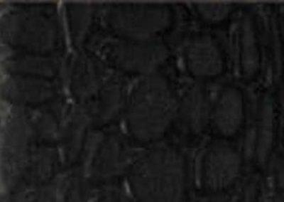 Black Doff SB