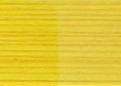 WS Yellow