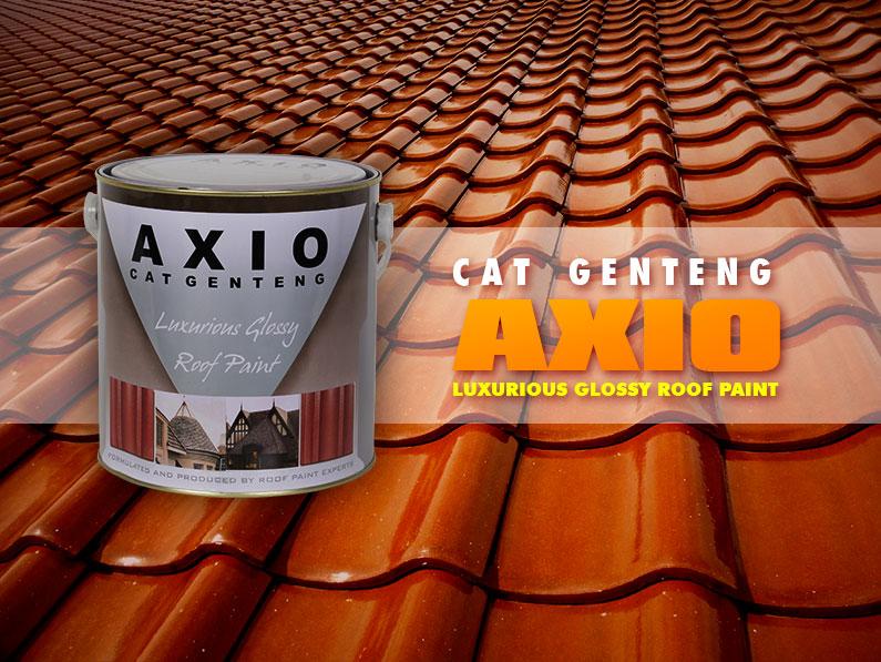 Indana Paint Front Product Axiio Indana